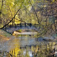 Осень в старинном парке. :: Евгений Яхим