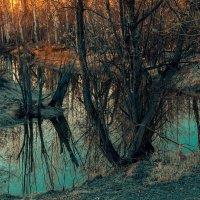 Рассвет :: Андрей Кузнецов
