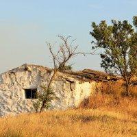 Старый дом. :: Лариса Исаева