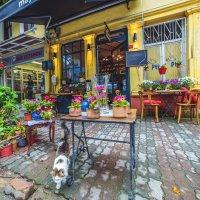 Кафе в Кузгунджук :: Ирина Лепнёва