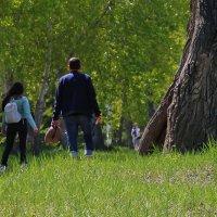 Хороший летний день для прогулки с книжкой :: Екатерина Торганская