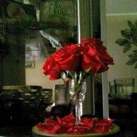 Мини букет роз :: Светлана Громова