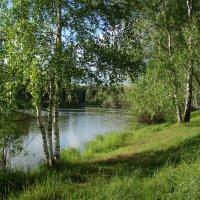 Июнь. На озере. :: Татьяна Георгиевна