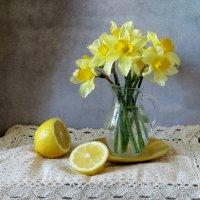 Нарциссы и лимон :: SaGa