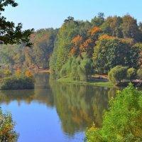 Верхний царицынский пруд :: Константин Анисимов