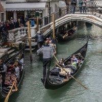 Venezia, aprile. I gondolieri. :: Игорь Олегович Кравченко