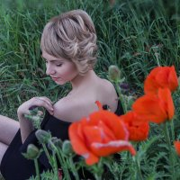 Когда цветут маки.. :: Марина Домишкевич