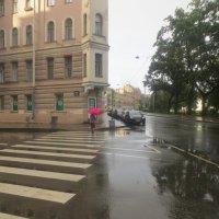 в дождливый день :: Елена