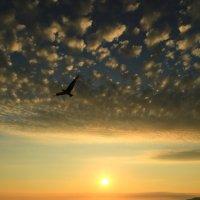 Провожая закат :: valeriy khlopunov