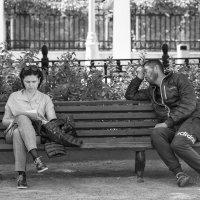 Женщина, хотите большой и светлой любви? :: Александр Степовой