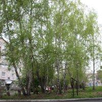 Весенний двор :: Олег Афанасьевич Сергеев