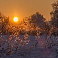 закат :: Ольга Горд