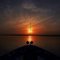 Курс на солнце. :: Тамара Бучарская