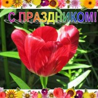 С праздником! :: Дмитрий Никитин