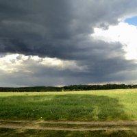Огромное небо, огромное небо.... :: Ольга Кривых