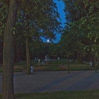 Летний сад. :: Senior Веселков Петр