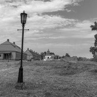 Можно в полночь косить трын-траву на поляне :: Валерий Михмель