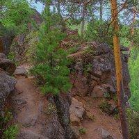 Тропа на Витязь :: Nikolay Svetin