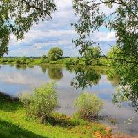 Чуть слышное течение реки... :: Лесо-Вед (Баранов)