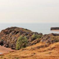 Крымский пейзаж. :: Лариса Исаева