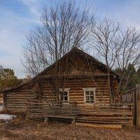 Забытая деревня :: Татьяна Афанасьева