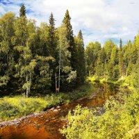 Наша Северная красота! :: Лариса Сафонова