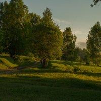 летним утром :: Ольга Ерохина