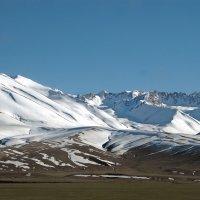 Снежные вершины Тянь-Шаня :: Галина Ильясова