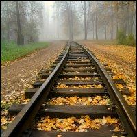 А я еду за туманом... :: Алексей Патлах