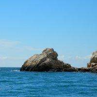 Камушек в луже моря! :: ирина