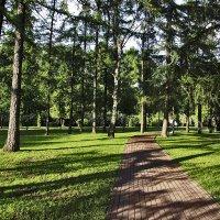 В парке :: Nikolay Monahov
