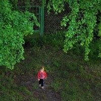 Ребенок во дворе :: Валерий Талашов