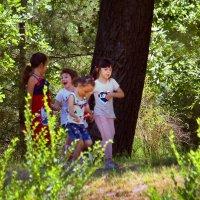 Дети в парке. :: barsuk lesnoi