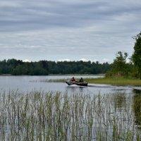 На рыбалку :: Ирина Ярцева