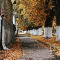 Просто осень.... :: leonid
