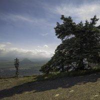 Гора Машук :: Александра