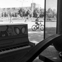 Лето :: Валерий Михмель