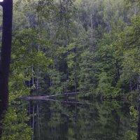 озеро Конан-Ер :: Лада Котлова