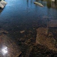 Немного солнца в холодной воде :: Ник Васильев