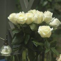 Как хороши, как свежи были розы... :: Senior Веселков Петр