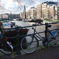 Амстердам :: Игорь 74