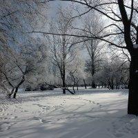 Московская зима. :: Александр Горячев
