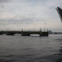 Троицкий мост :: Наталья Герасимова