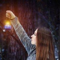 Сумрак в лесу :: Надежда Журавкова