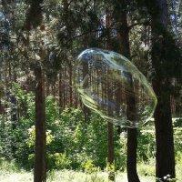 НЛО :) Мыльный пузырь. :: nika555nika Ирина