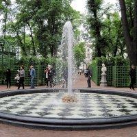 Фонтан в Летнем саду. :: Ирина ***