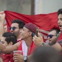 Фанаты команды Туниса :: Александр Степовой