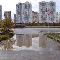 После дождя. :: Лариса Вишневская