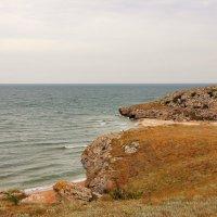 Природа Крыма.Караларский природный парк. :: Лариса Исаева