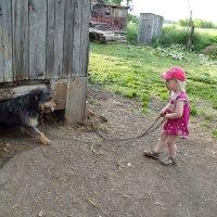 Выходи, подлый трус! :: Светлана Рябова-Шатунова
